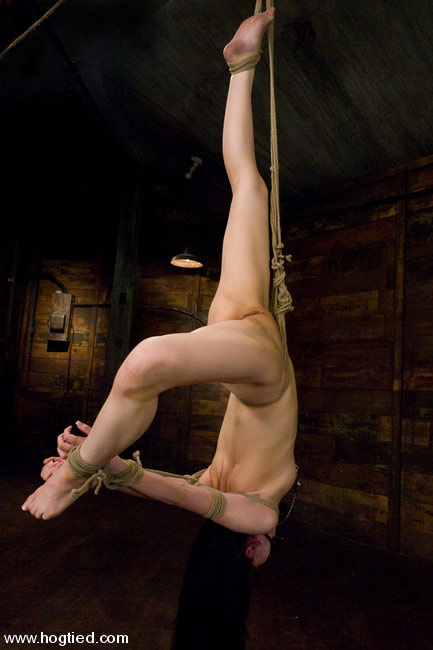 Tied up and toyed